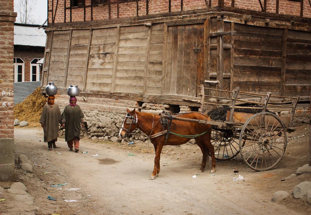 horse-manure-cart-and-women